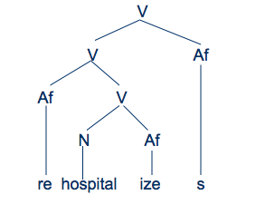 Morphology part 5 another way to draw trees is to bring all the branches lines down to the same level this allows you to see the final whole word on one horizontal line ccuart Image collections